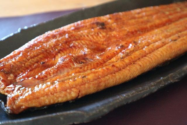 ウナギ【鰻】|栄養の宝庫!ビタミンAが免疫力と内臓を強化する