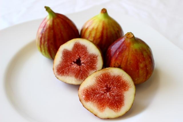 イチジク【無花果】|食べれば整腸。外用すれば痔や水虫に効果も?