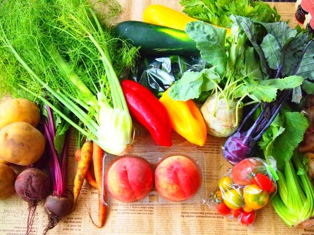 病は口より入る|食べ物で病気にならない身体をつくろう!