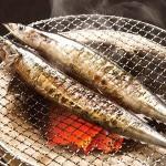 秋刀魚が獲れない!?漁獲量低下の理由とは~日本・台湾・中国でサンマ戦争勃発!~