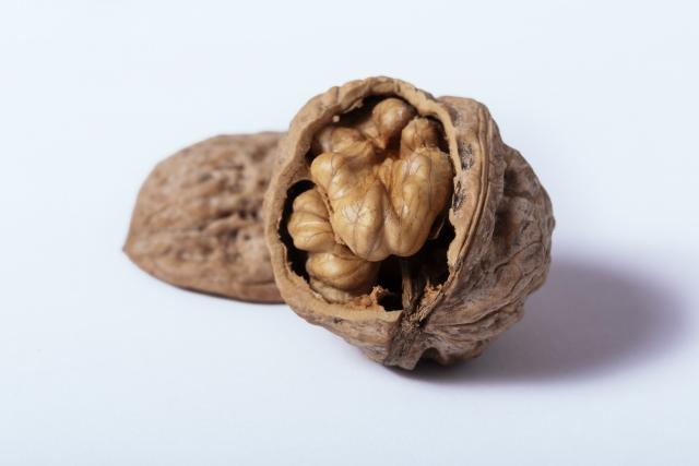 クルミ【胡桃】|ぷるぷる肌と健脳作用。西太后が愛したクルミ汁粉