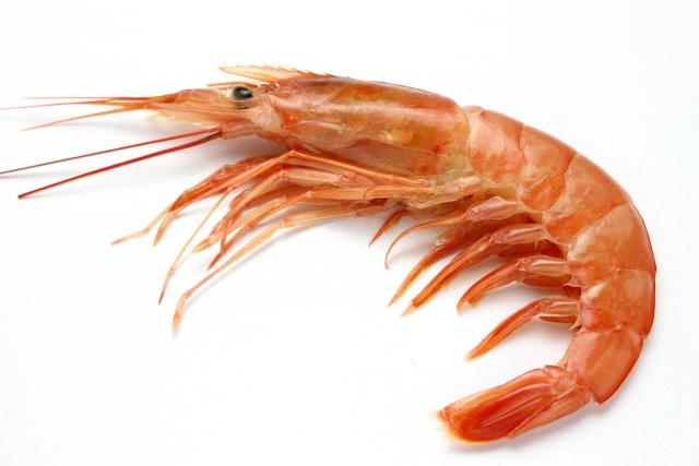 エビ【蝦】|味噌は栄養の貯蔵庫。滋養強壮効果あり、髪も健やかに
