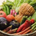 京野菜の発祥は中国、朝鮮から!京野菜の定義に迫る!