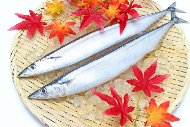 サンマ【秋刀魚】|はらわたのビタミンB12が貧血や不妊症を改善