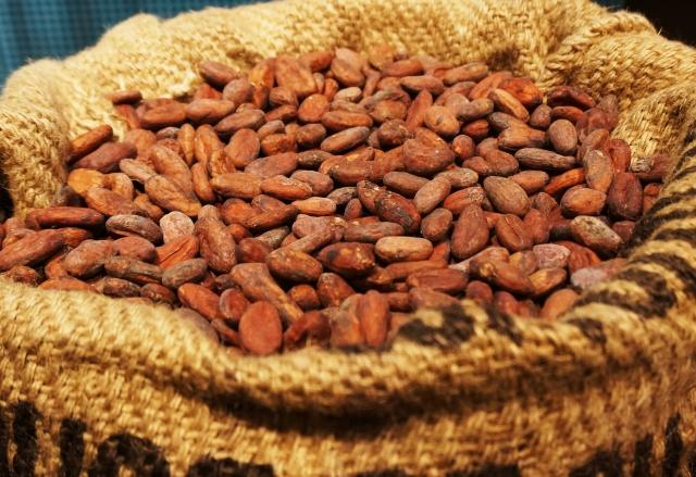 ココア・チョコレート|ミネラル含有で即効性の高いエネルギー源