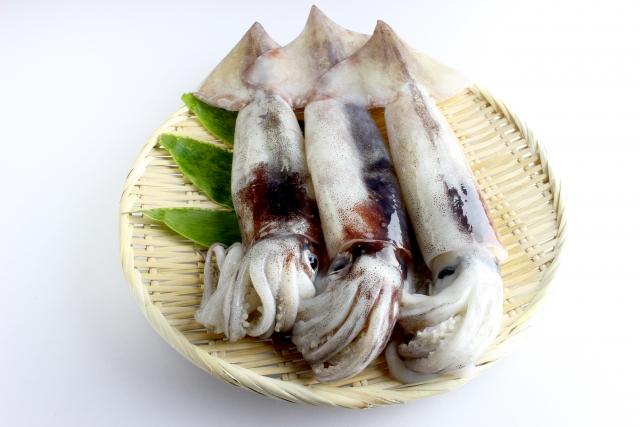 イカ【烏賊】|タウリンで肥満に喝!糖質ほぼ0で糖尿病の方にも