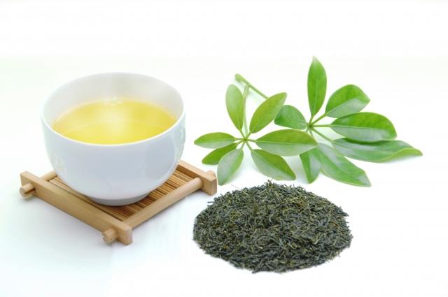 緑茶と紅茶|茶葉の発酵度合いの差が分かれ道。共に抗菌作用を持つ