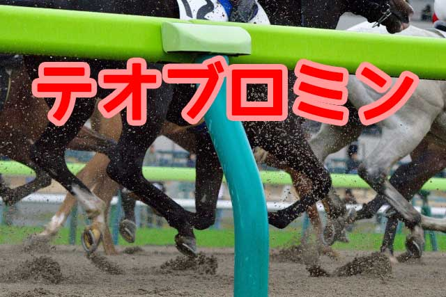 テオブロミン|JRA競馬施行規程の禁止薬物